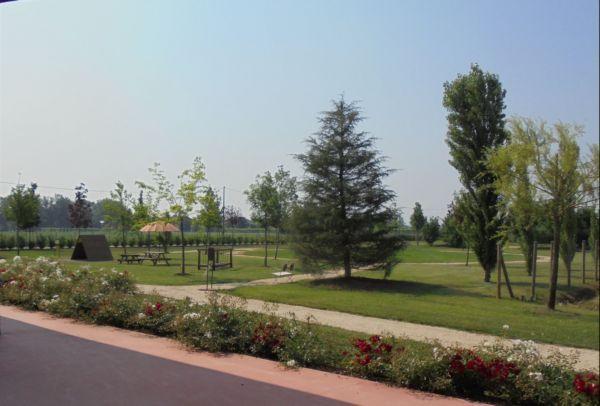 Un buon impianto d'irrigazione, con acqua del pozzo e una particolare specie di rosa rifiorente rendono piacevole il nostro parco per tutta l'estate