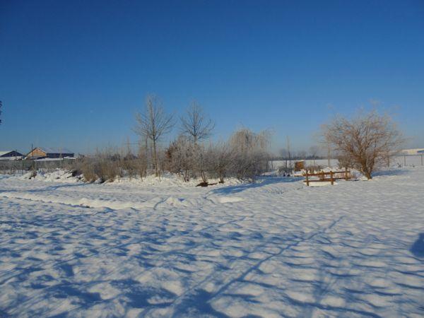 L'aiuola delle farfalle, le piante,  lo stagno, il ponticello: la neve sembra uniformare tutto sotto il suo mantello bianco