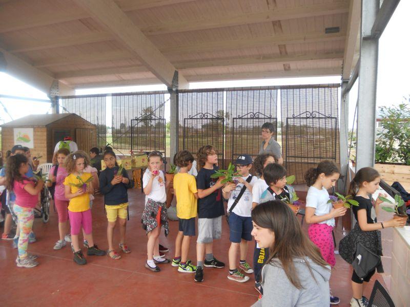 Attività di educazione ambientale rivolta ad una comitiva di bambini di 3 elementare: abbiamo imparato che cos'è una talea e l'abbiamo fatta. Abbiamo cercato il fiore delle farfalle nel nostro parco e alla fine i bambini hanno portato a casa un bel vasetto da accudire..