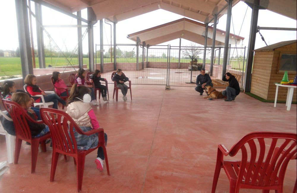 Attività di educazione cinofila svolta con un gruppo di bambini sotto la serra.