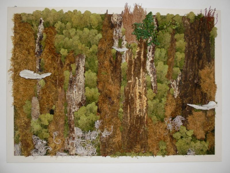 Particolare del Bosco in parete, una bella composizione di elementi naturali con muschi, funghi, cortecce al di sotto della quale abbiamo ambientato l'angolo pic-nic