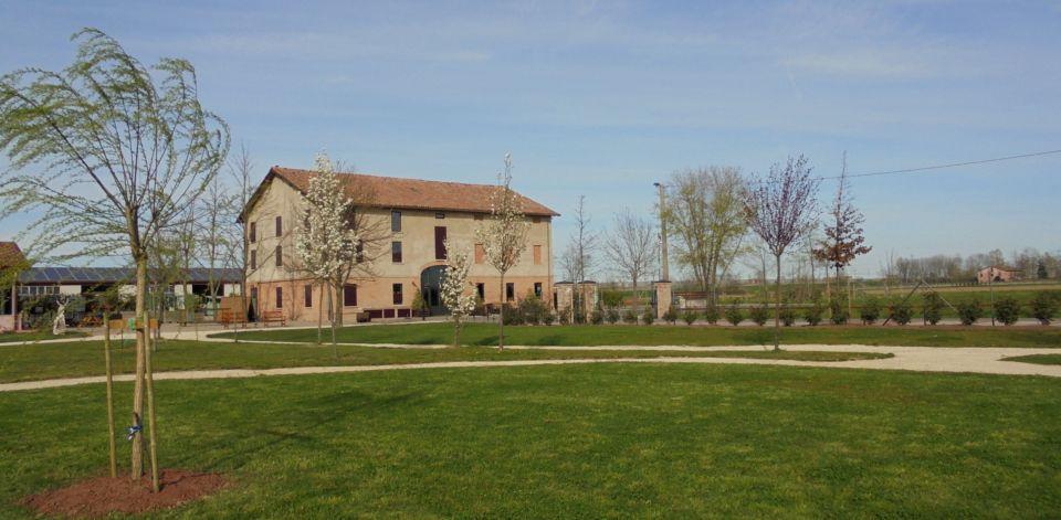 Fiori e gemme delle piante del parco annunciano la primavera