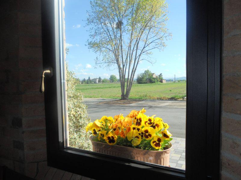 Guardi fuori dalla finestra della vecchia stalla:  è primavera!