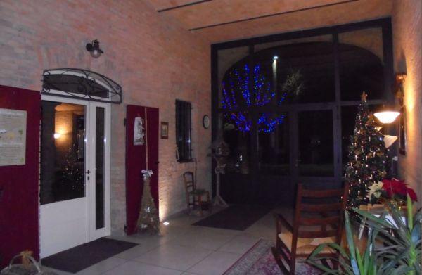 Entrano le luci blu dell'albero di Natale allestito davanti a casa