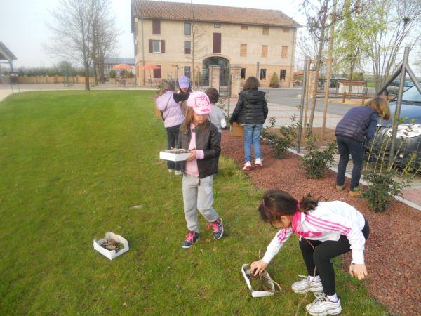 La raccolta di elementi naturali nel parco