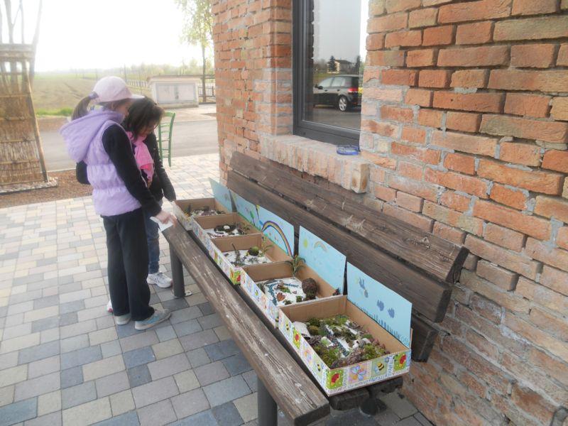 Un piccolo giardino in scatola da portare a casa, fatto con gli elementi  naturali raccolti nel parco