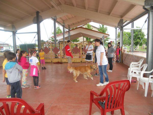 L'incontro con Jago, il cane di Silvia, ha avuto sui bambini  un effetto speciale.. Come devo fare? Perchè ho paura? Posso accarezzare? Possso dargli da mangiare? A tutte queste domande Silvia da una risposta insieme al suo Jago!