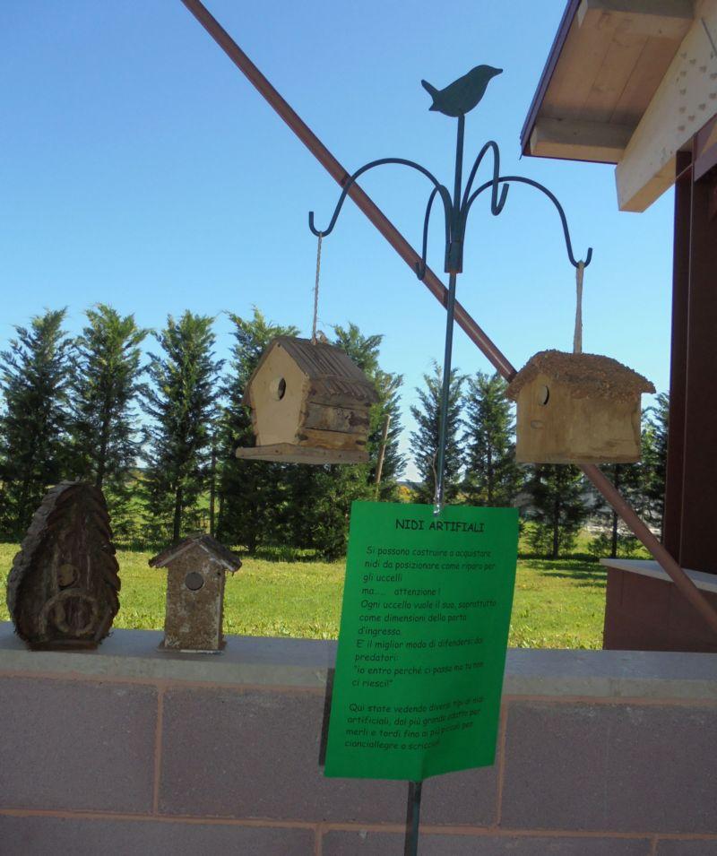 Esempi di nidi artificiali con le raccomandazioni necessarie al loro posizionamento...