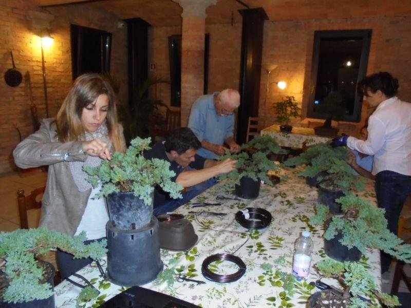 Tutti impegnati nella scelta e applicazione del filo. Qualcuno ha deciso di indossare i guanti per non pungersi....  Il bonsai ha appassionato i corsisti di tutte le età!