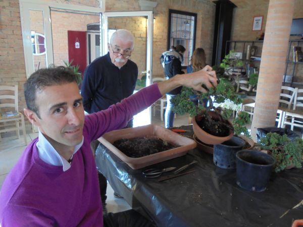 Una volta ancorata, pianta e vaso sono un corpo unico, come ci mostra Alberto