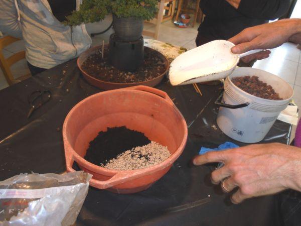Si prepara poi la miscela per un corretto rinvaso: terriccio specifico molto granuloso in modo da far respirare le radici insieme ad una piccola parte di terriccio universale....