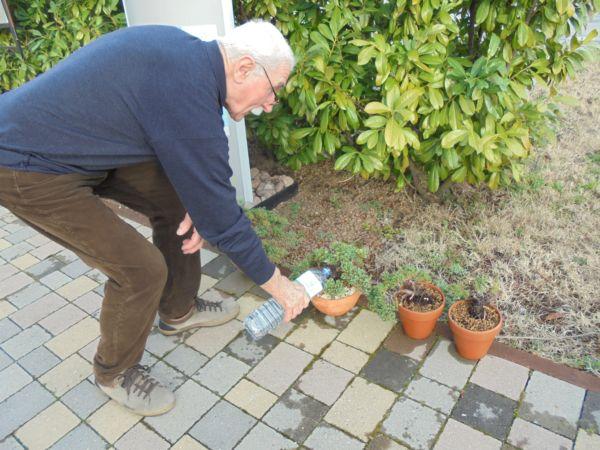 Portiamo i nuovi vasi all'esterno e diamo abbondante acqua