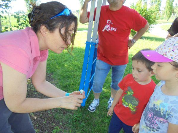 Abbiamo trovato in terra delle piccole uova.... Silvia le mostra ai bambini spiegando di cosa si tratta...