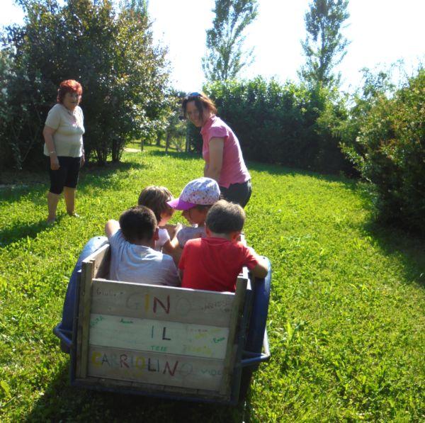 Tutti i nidi sono montati, ora nel cariolino ci salgono i bambini per il viaggio di ritorno!