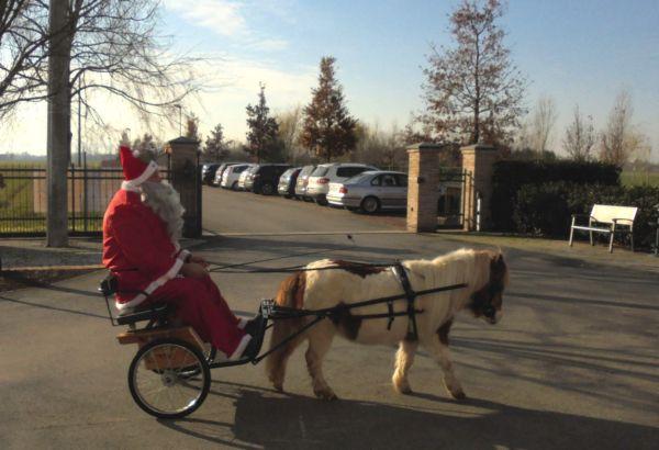 Che sorpresa vedere l'arrivo del calesse di Babbo Natale trainato da Pioggia, il suo amato Pony!