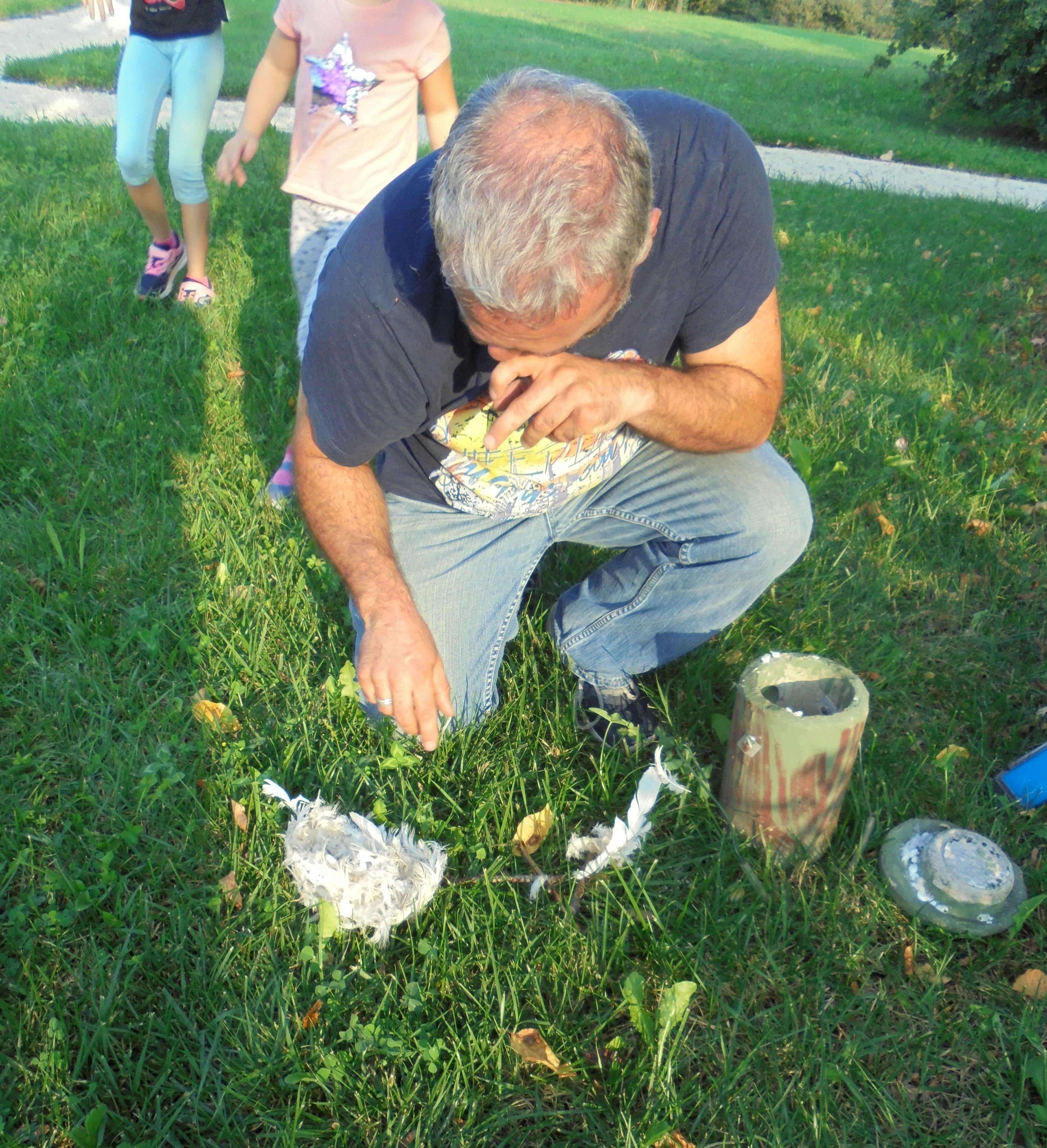 Che sorpresa, abbiamo trovato un nido fatto di sole piume bianche: che morbido riparo si è costruita la cinciallegra!