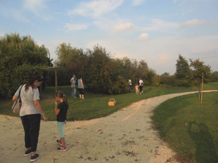 Ci siamo divertiti anche a ricercare i nidi nel parco,  solo Simone aveva la mappa !